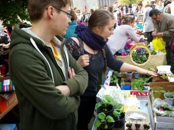 Stadtgärtner auf dem Adalbero-Flohmarkt: Matthias und Britta verkaufen Setzlinge.